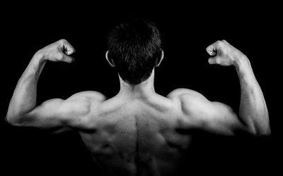 Vet verliezen en spiermassa opbouwen